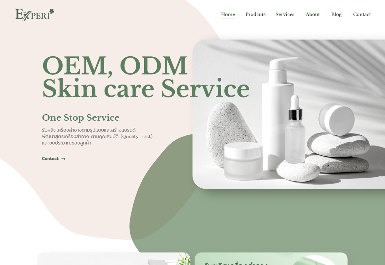 ออกแบบเว็บไซต์ web design